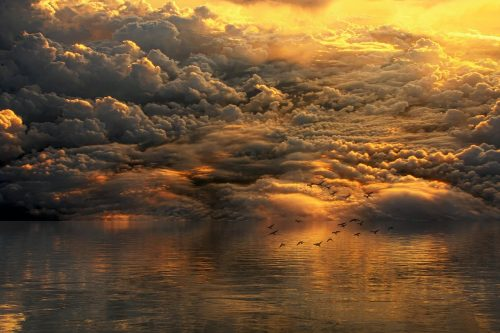 landscape with clouds, water, birds