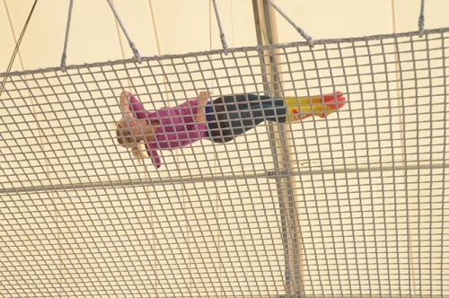 woman on safety net